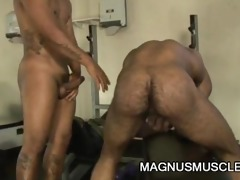muscle guys teasing every others dick