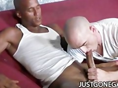 white dude worships big black dick